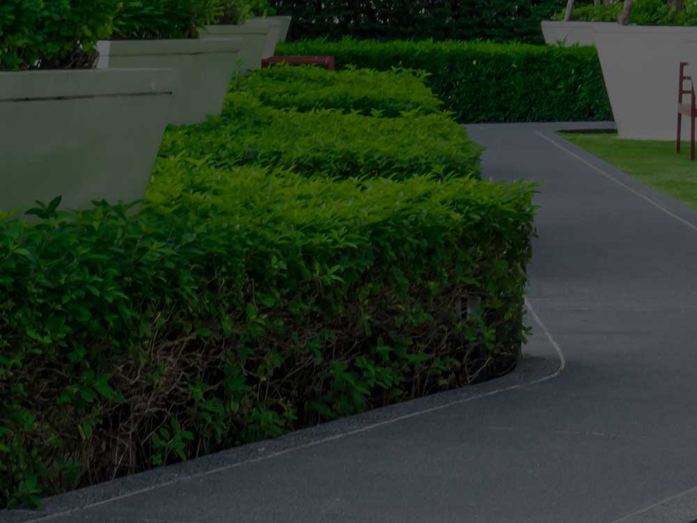 Minneapolis Commercial Landscaping