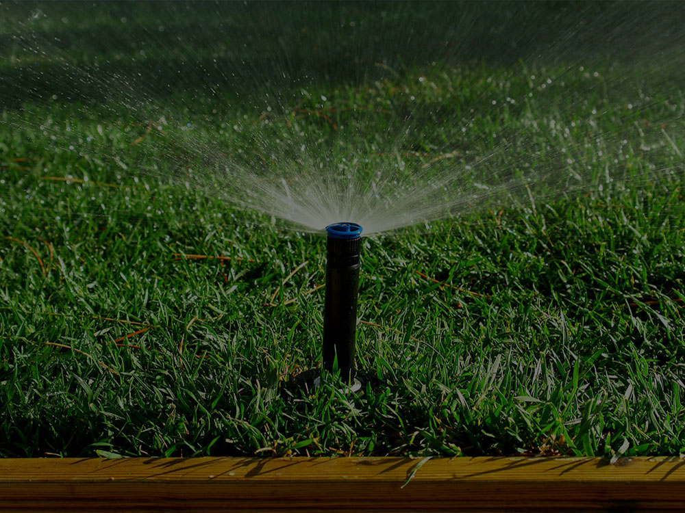 Minneapolis Irrigation
