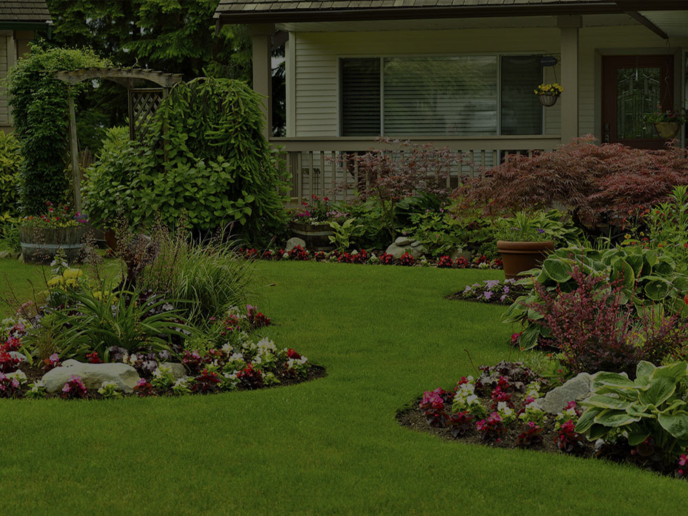 Saint Paul Landscape Design