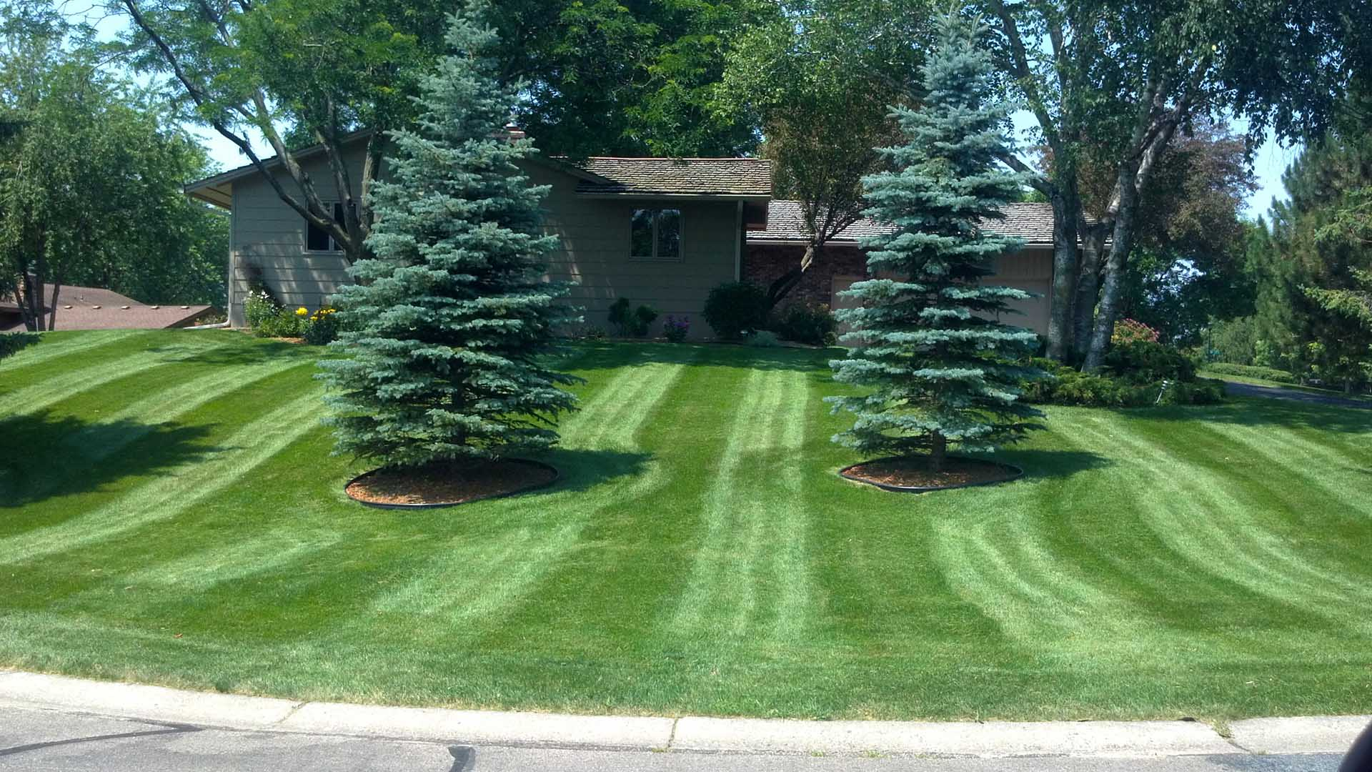 New Commercial Landscapers Near Me
